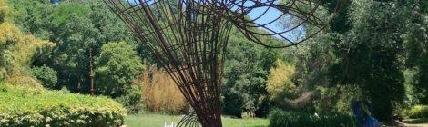 La Serpara - Garden Music